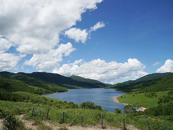 草津温泉から四万温泉へ〈3〉野反湖とチャツボミゴケ公園